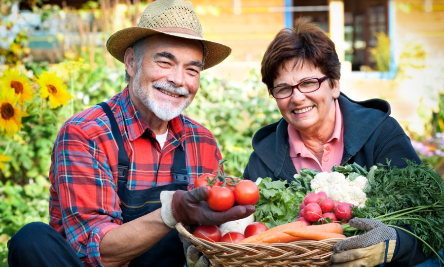 The Best Foods for Seniors to Eat